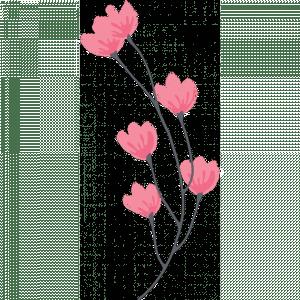 greenwich-photographer-flower-1